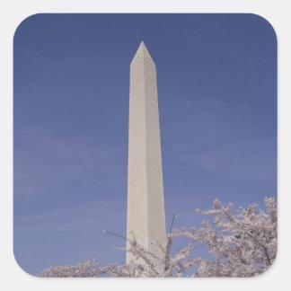 North America, USA, Washington D.C.. Washington Square Sticker