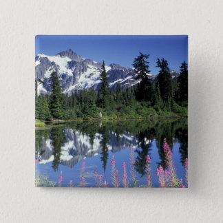 North America, USA, Washington, Heather Meadows Button
