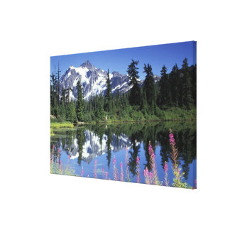 North America, USA, Washington, Heather Meadows Gallery Wrapped Canvas