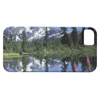 North America, USA, Washington, Heather Meadows iPhone 5 Covers