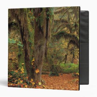 North America; USA; Washington, Moss-Covered Binder