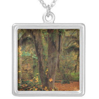 North America; USA; Washington, Moss-Covered Silver Plated Necklace
