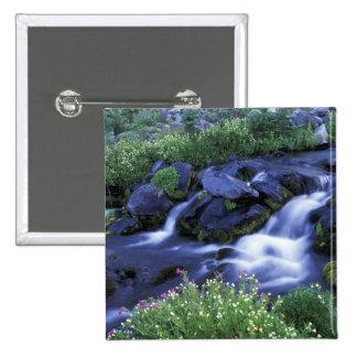 North America, USA, Washington, Mt. Rainier 3 Buttons