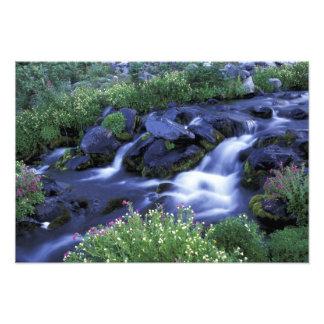 North America, USA, Washington, Mt. Rainier 3 Photo Print