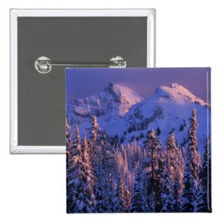 North America, USA, Washington, Mt. Rainier 4 Pins