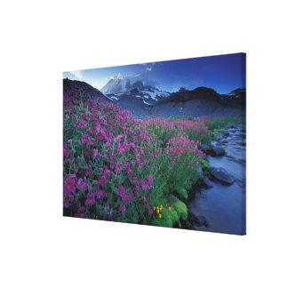 North America, USA, Washington, Mt. Rainier 4 Canvas Print