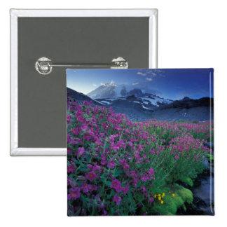 North America, USA, Washington, Mt. Rainier 6 Pins