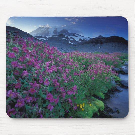 North America, USA, Washington, Mt. Rainier 6 Mouse Pad