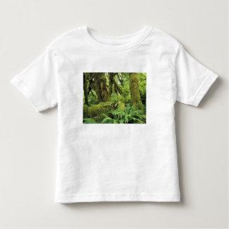 North America, USA, Washington, Olympic 3 Toddler T-shirt