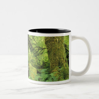 North America, USA, Washington, Olympic 3 Two-Tone Coffee Mug