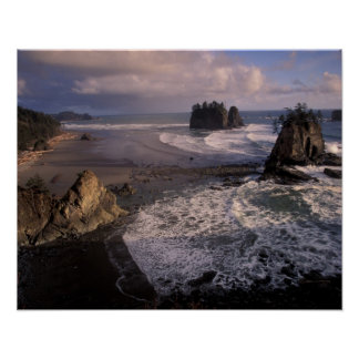 North America, USA, Washington, Olympic NP, Poster