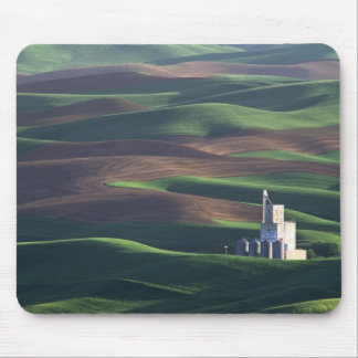 North America, USA, Washington, Palouse. The Mouse Pad