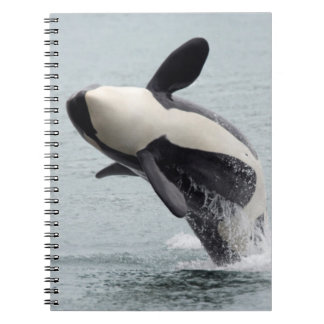North America, USA, Washington, San Juan Notebook