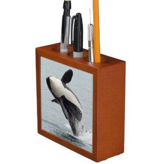 North America, USA, Washington, San Juan Pencil Holder