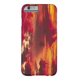 North America, USA, Washington, Seattle. Sunrise Barely There iPhone 6 Case