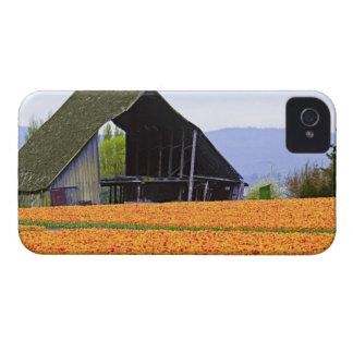 North America, USA, Washington, Skagit Valley. 2 iPhone 4 Cover