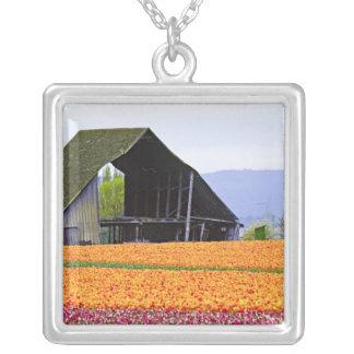 North America, USA, Washington, Skagit Valley. 2 Square Pendant Necklace