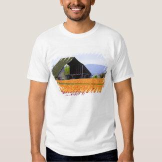 North America, USA, Washington, Skagit Valley. 2 Tee Shirt