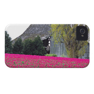 North America, USA, Washington, Skagit Valley. iPhone 4 Case-Mate Cases