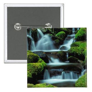 North America; USA; Washington, Sol Duc Cascade Pinback Button
