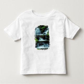 North America; USA; Washington, Sol Duc Cascade Toddler T-shirt