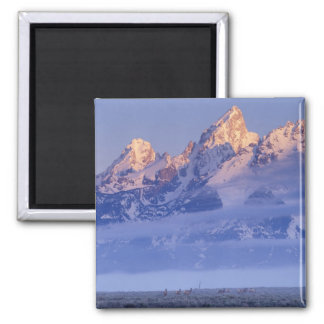 North America, USA, Wyoming, Grand Teton NP, 2 2 Inch Square Magnet