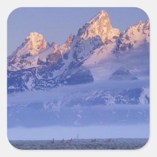 North America, USA, Wyoming, Grand Teton NP, 2 Square Sticker