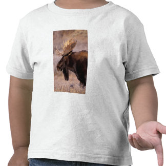North America USA Wyoming Grand Teton NP Shirt
