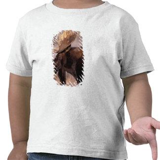 North America USA Wyoming Grand Teton NP T-shirts