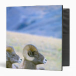 North America, USA, Wyoming, Yellowstone Vinyl Binder