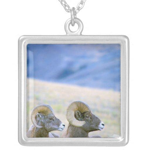 North America, USA, Wyoming, Yellowstone Square Pendant Necklace