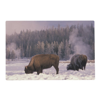 North America, USA, Wyoming, Yellowstone NP, Placemat