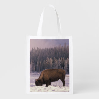North America, USA, Wyoming, Yellowstone NP, Reusable Grocery Bags