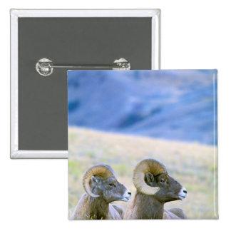 North America, USA, Wyoming, Yellowstone Pinback Button