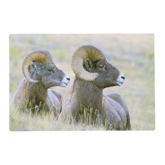 North America, USA, Wyoming, Yellowstone Placemat