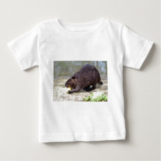 North American Beaver eating apple Infant T-shirt