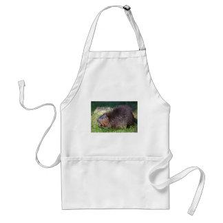 North American Beaver eating vegetable Adult Apron