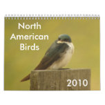 North American Birds 2010 Calendar