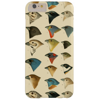 North American Birds Barely There iPhone 6 Plus Case