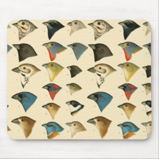 North American Birds Mouse Pad