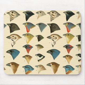 North American Birds Mousepad