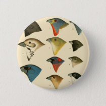 North American Birds Pinback Button