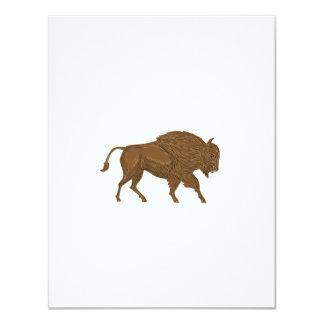 North American Bison Buffalo Charging Retro Card