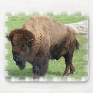 North American Bison Mouse Pad