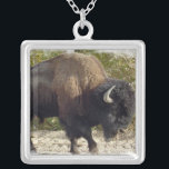 """North American Bison Necklace<br><div class=""""desc"""">North American Bison necklace.</div>"""