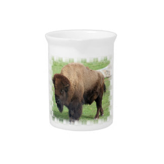 North American Bison Pitcher
