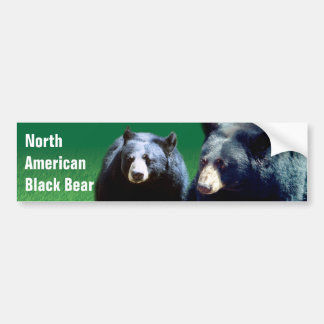 North American Black Bear Bumper Sticker Car Bumper Sticker