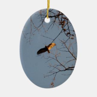 North American Buzzard coming home to roost Ceramic Ornament