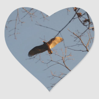 North American Buzzard coming home to roost Heart Sticker