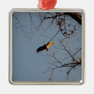 North American Buzzard coming home to roost Metal Ornament